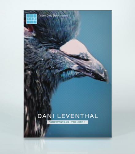 Dani Leventhal Videoworks: Volume 1