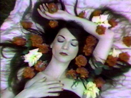 Cecelia Condit Videoworks: Volume 1